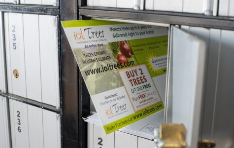 Flyers and Brochures printed and bulk mailed by Black Tie Press